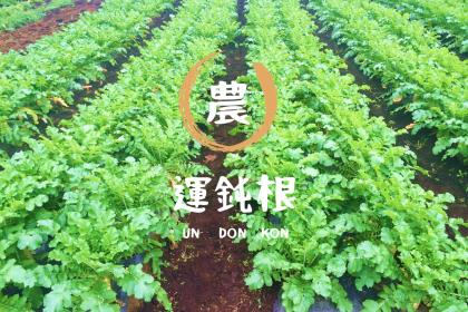農業野菜 農作物 TPP デザイン マーケティング ブランディング アウトバウンド アジア タイ シンガポール アメリカ